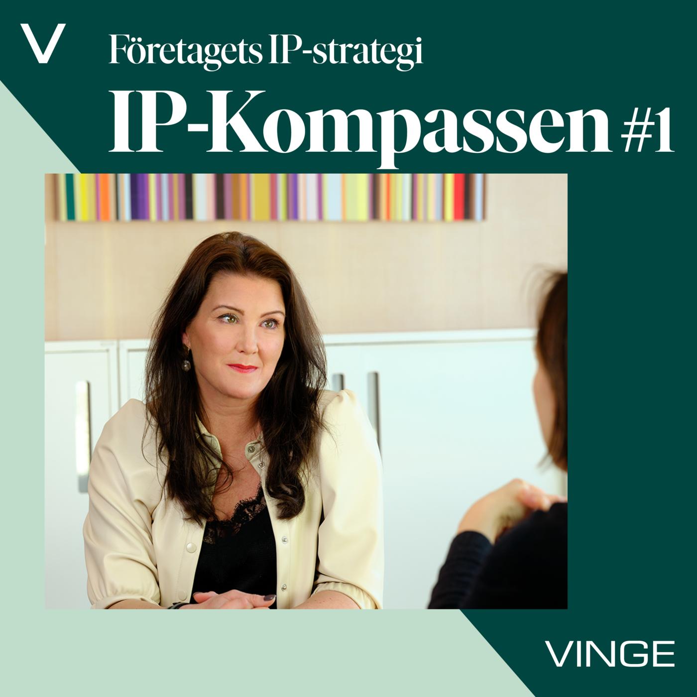 #1 Företagets IP-strategi
