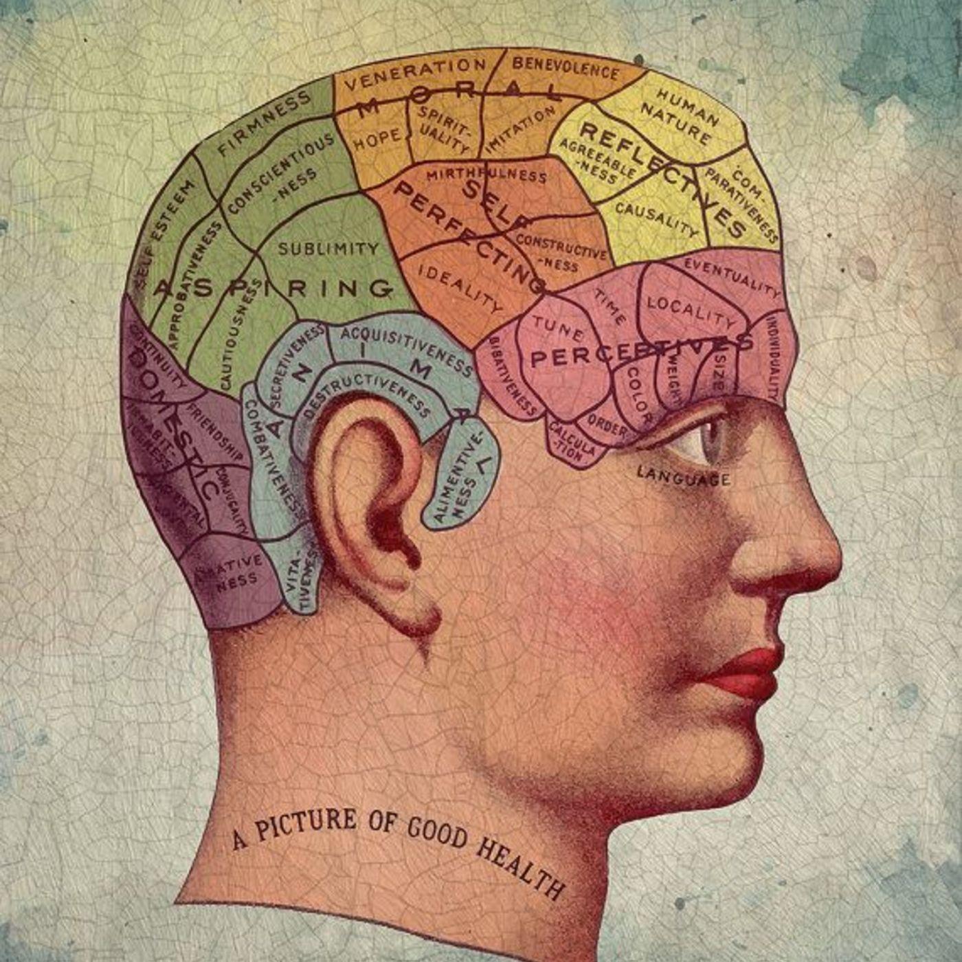 Laboratoriet i hjernen