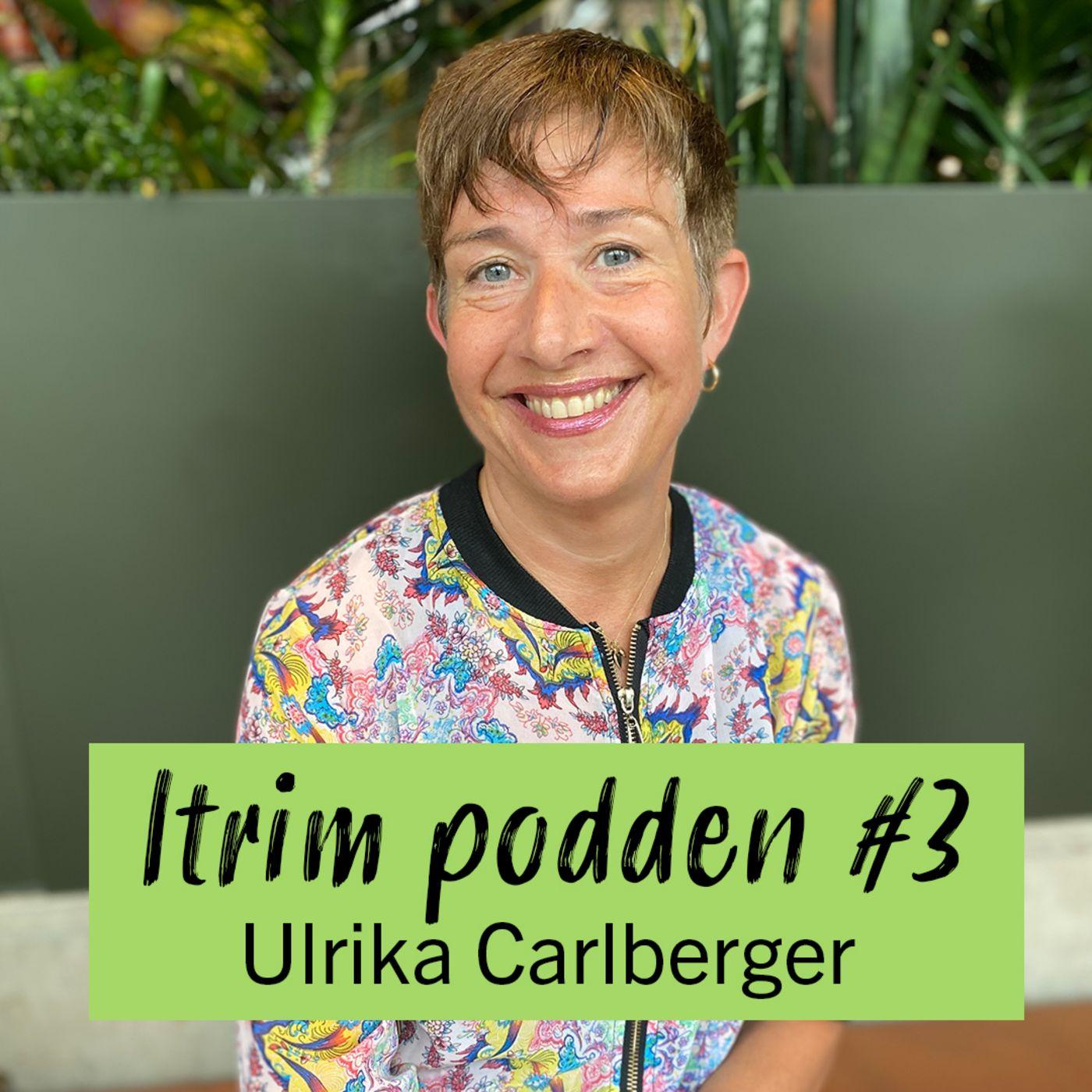 #3: Ulrika Carlberger, är det digestivkexet som bestämmer?