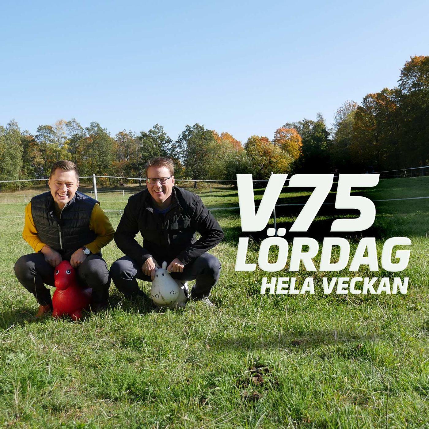V75 - lördag hela veckan